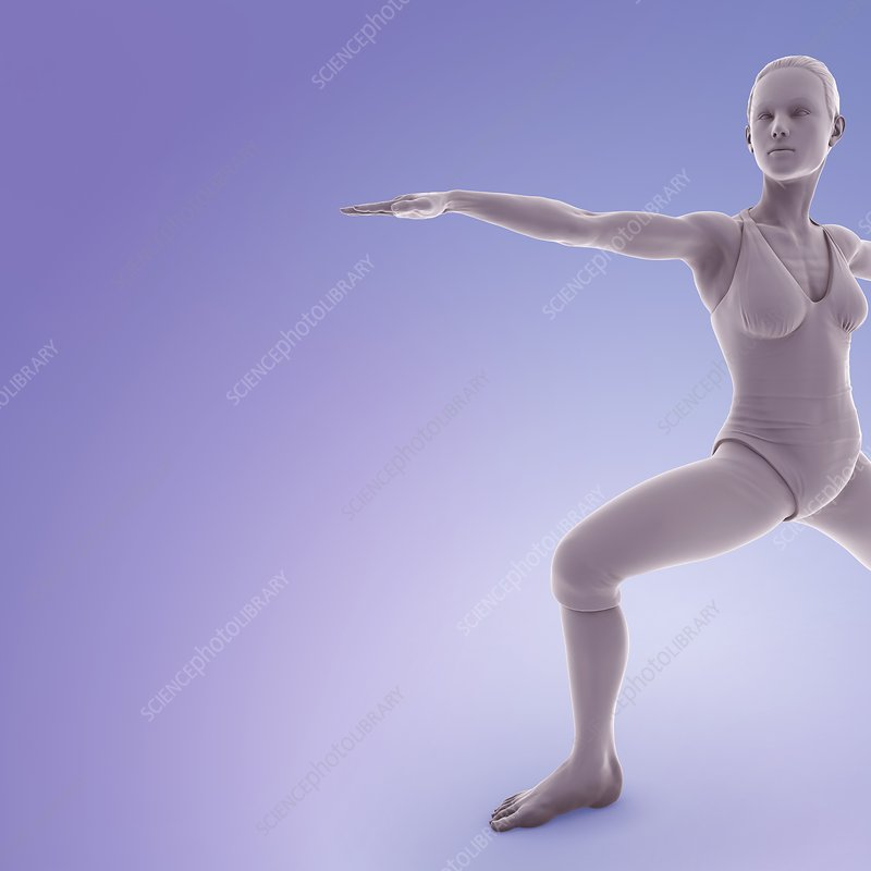 Yoga Warrior II Pose, artwork