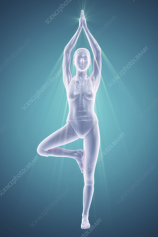 Yoga Tree Pose, artwork
