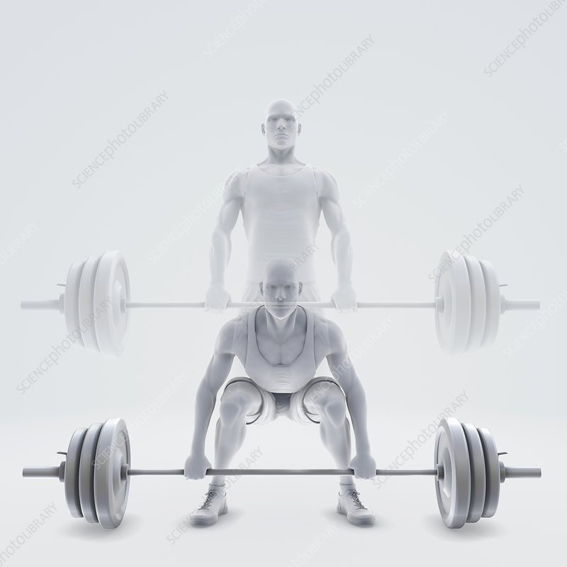 Exercise Workout, artwork