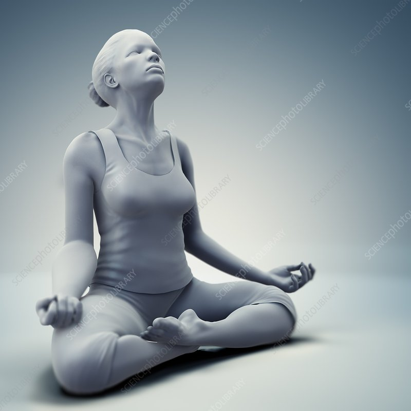 Meditation Pose, artwork