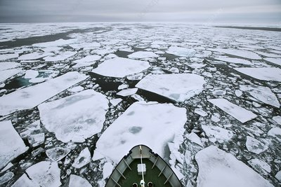 Arctic pack ice viewed from ships mast
