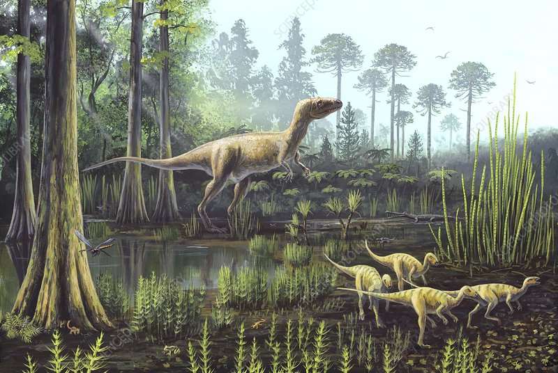 Middle Jurassic dinosaurs, artwork