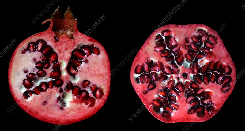 Halved pomegranates