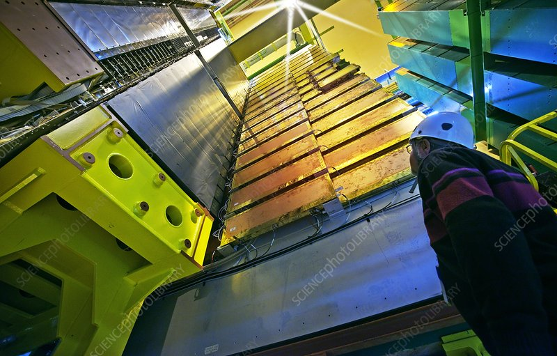 Large Hadron Collider Muon Detector