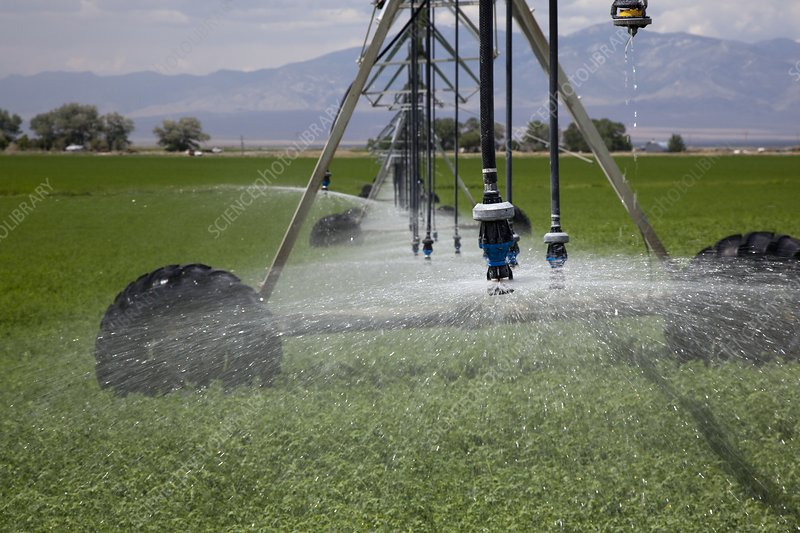 Irrigation boom in alfalfa field
