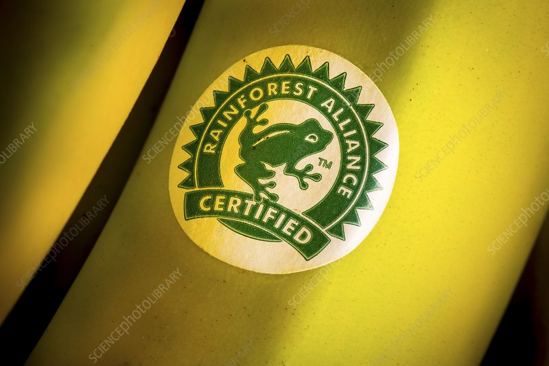 Rainforest Alliance label on banana
