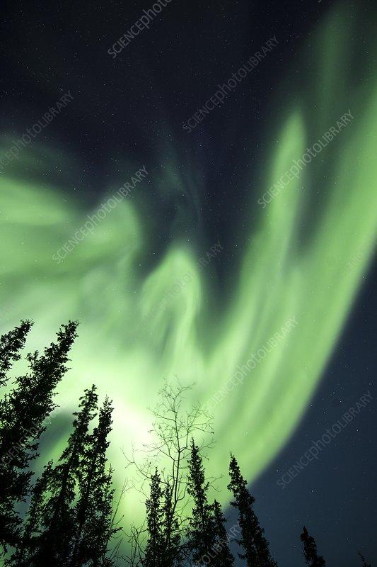 Aurora Borealis in Alaska
