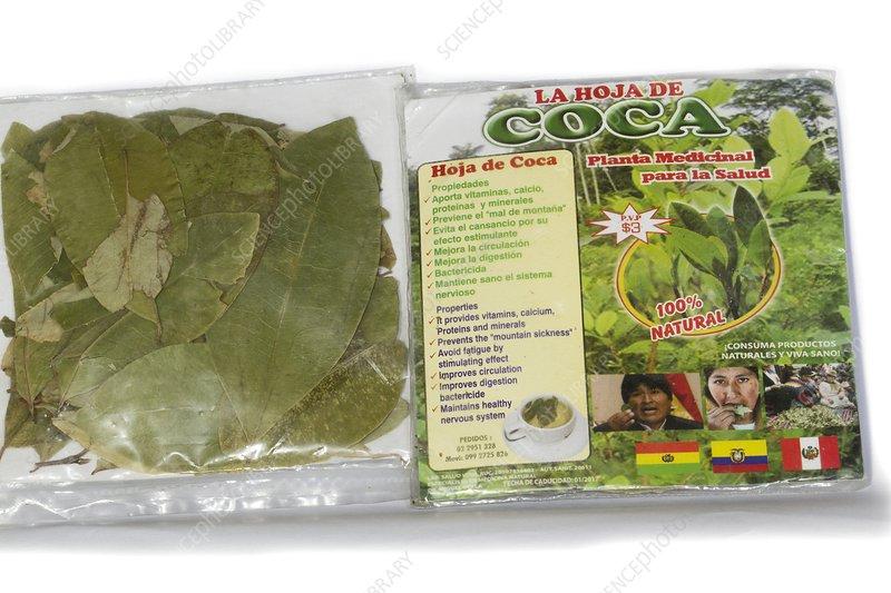 Coca leaves from Peru