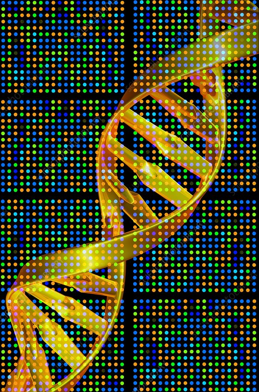 DNA microarray and double helix