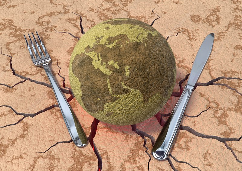 Global food production, conceptual image