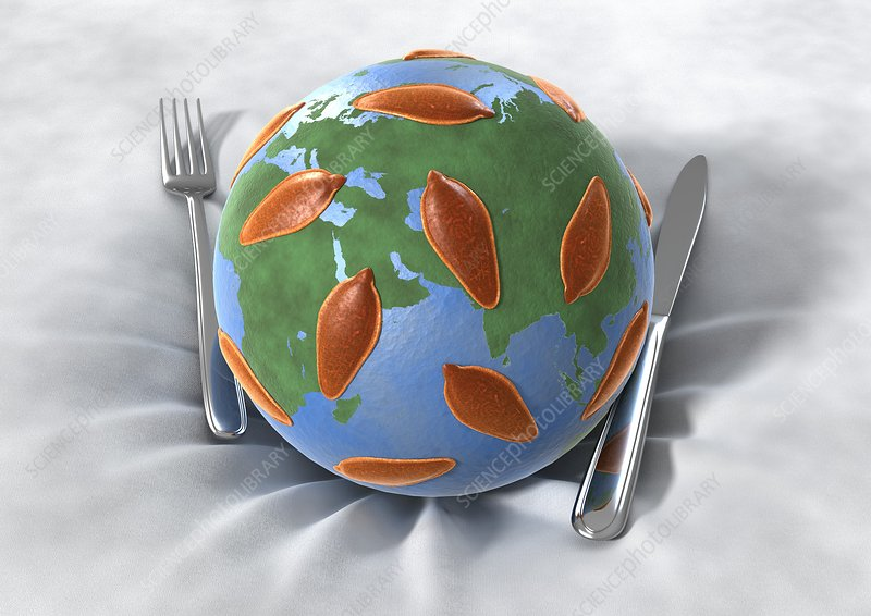 Global food infection, conceptual image