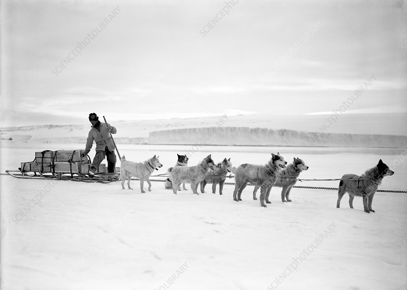 Terra Nova Antarctic exploration, 1911