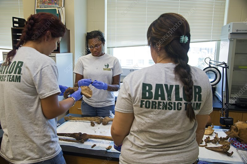 Forensic scientists identifying remains