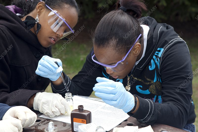 Students studying river ecology