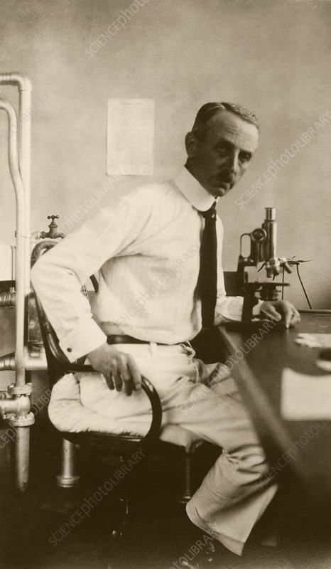 Leo Loeb, US pathologist