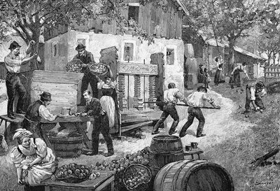 Pressing apples, 19th century artwork