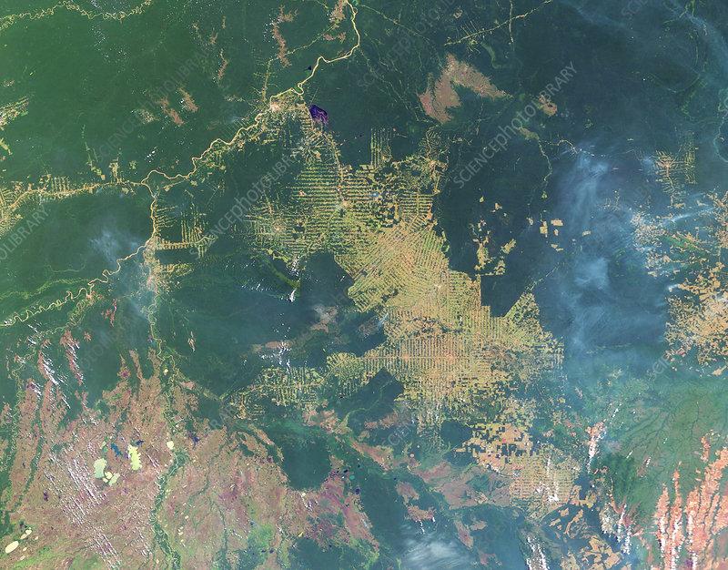 Deforestation in the Amazon, 2003