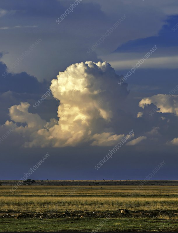 Vertical cumulus clouds