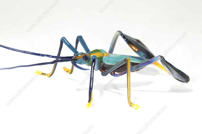Glass insect, sculpture