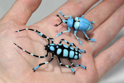Beetles, glass sculpture