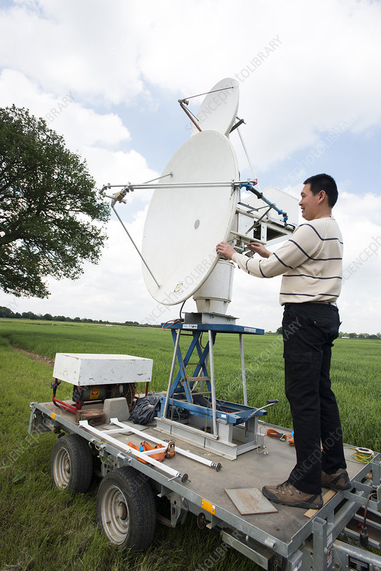 Insect radar research