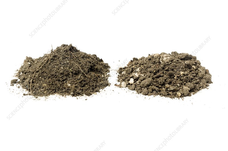 Samples of loam and garden soil stock image c021 5137 for Soil library