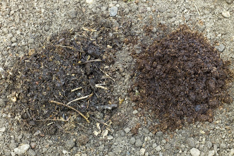 Leaf mould and peat on garden soil