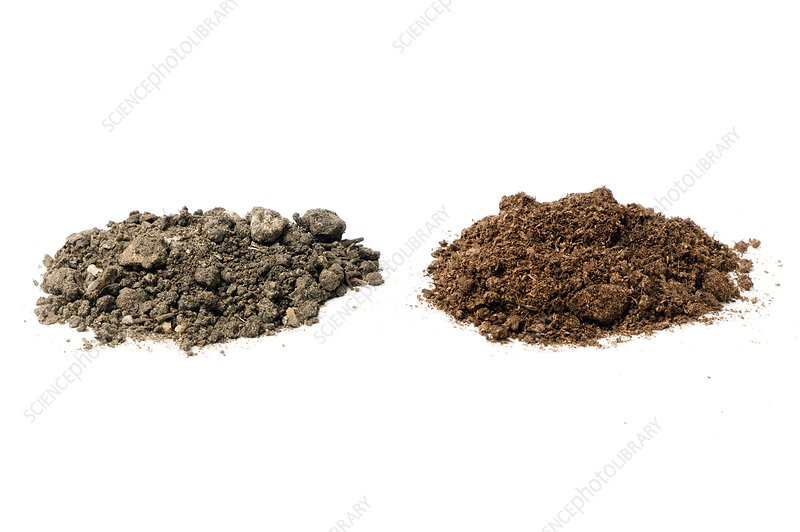 Garden soil and peat-based compost
