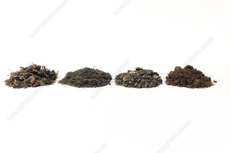 Four different types of soil