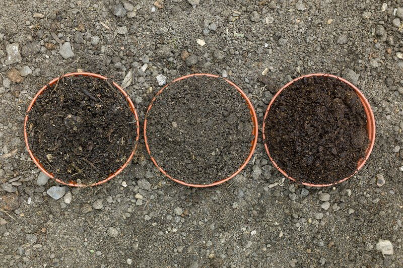 Comparison of composts to garden soil