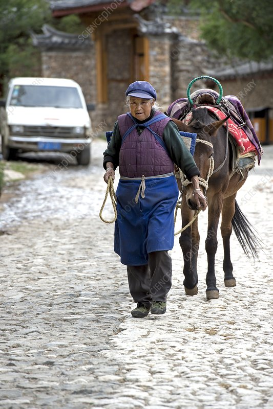 Elderly Naxi woman with her horse