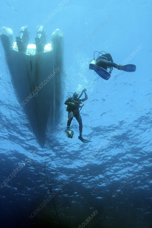 Divers descending from a boat