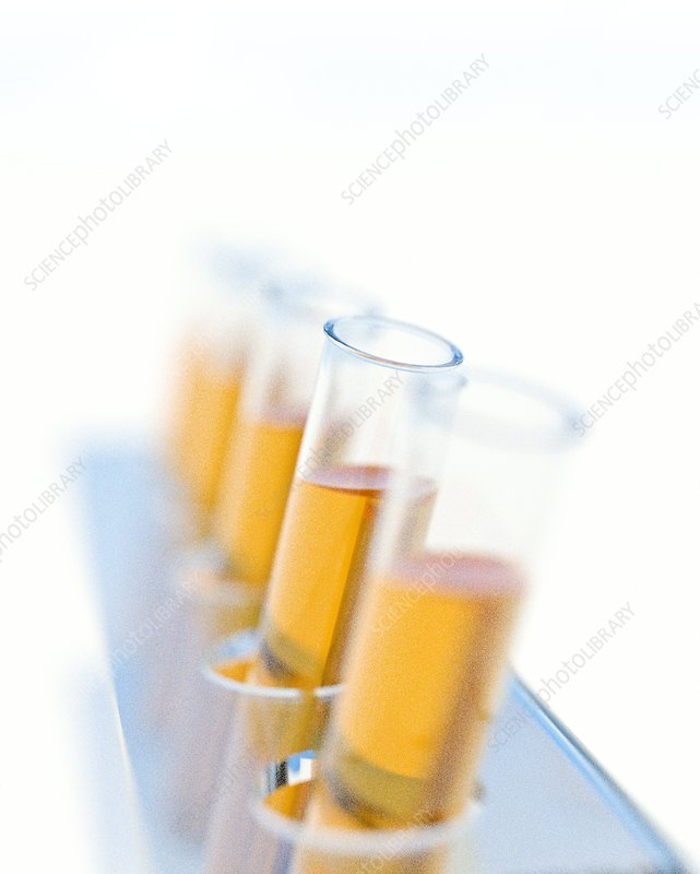 Array of test tubes
