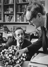 Hamilton and Wilkins, DNA researchers