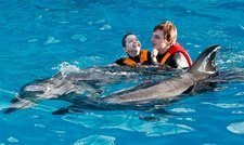 Dolphin therapy for children