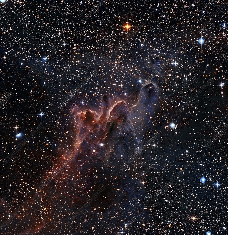 Cometary Globules in Vela and Puppis