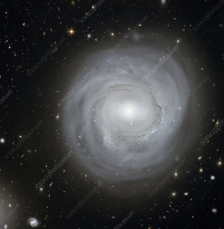 Spiral galaxy NGC 4921, HST image