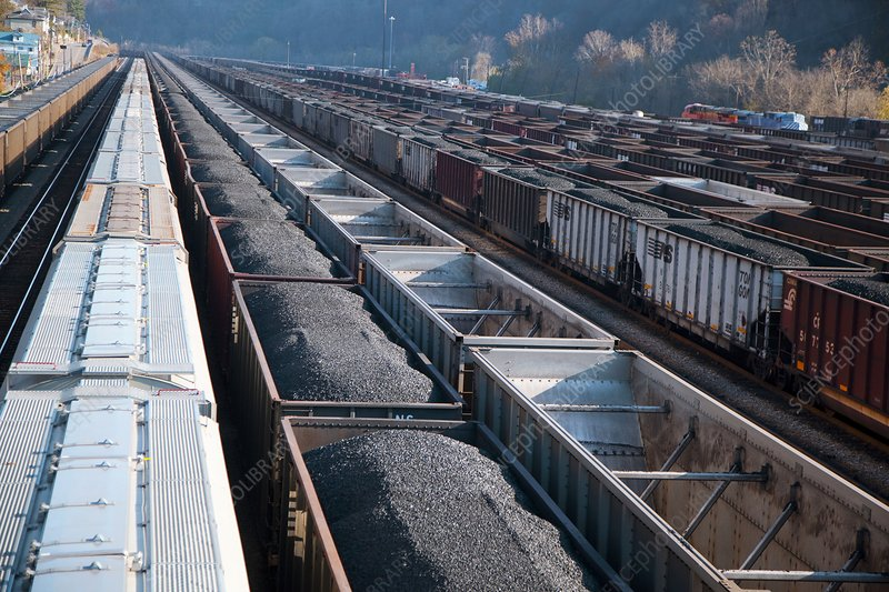 Coal trains in railway yard