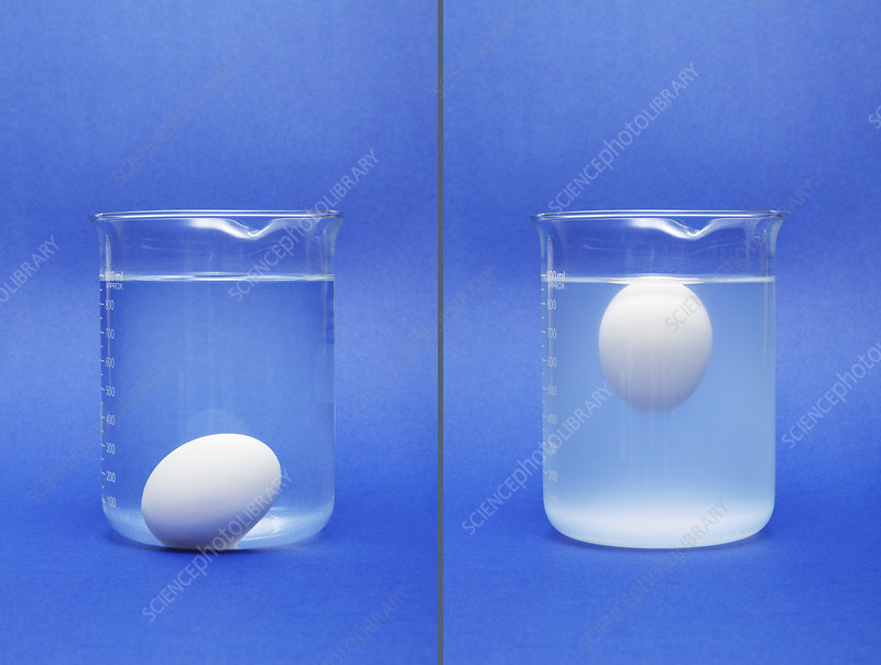 Egg sinking and floating