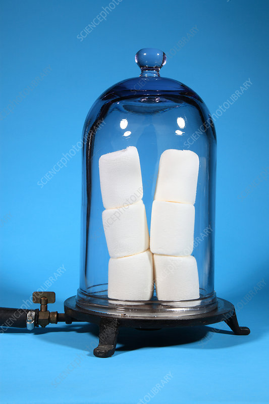 Marshmallows in a Vacuum, 4 of 5