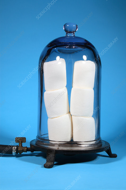 Marshmallows in a Vacuum, 5 of 5
