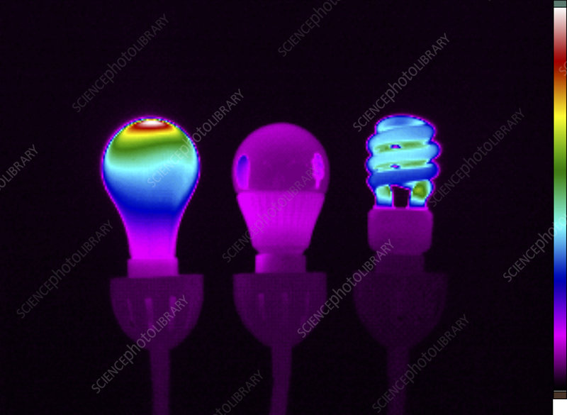 Thermogram of Light Bulbs