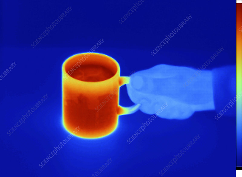 Thermogram of a Mug