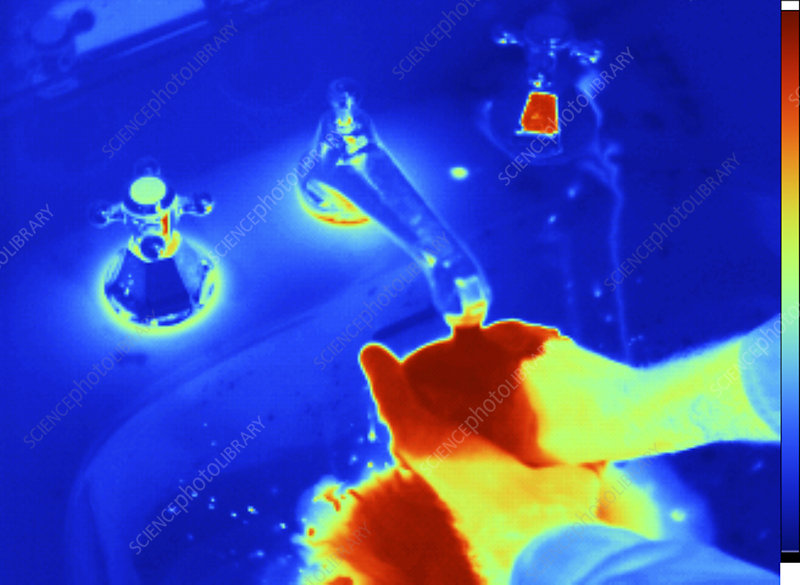 Washing Hands, Thermogram