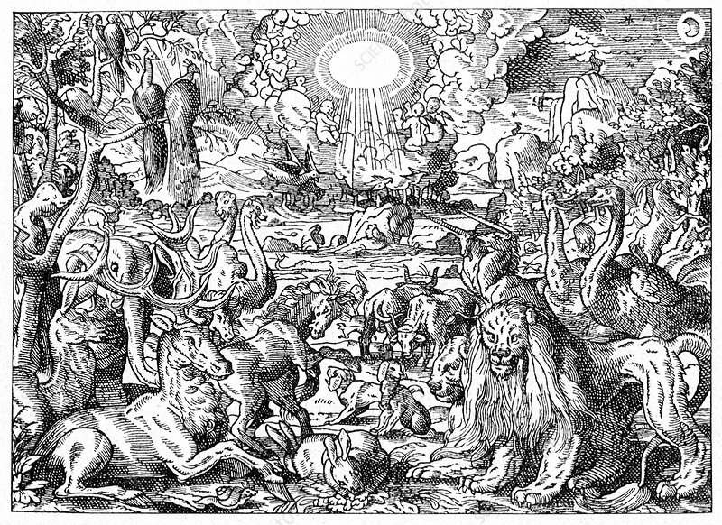 Paradise, 17th Century artwork