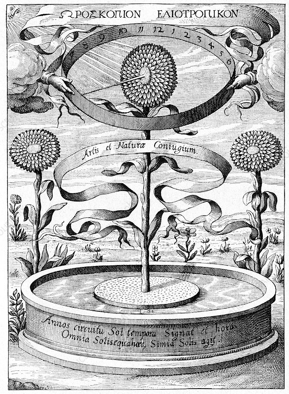 17th Century sundial, artwork