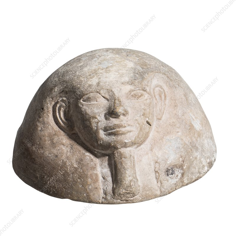 Egyptian terracotta Canopic jar lid