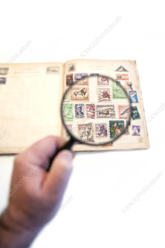 Stamp collecting hobby