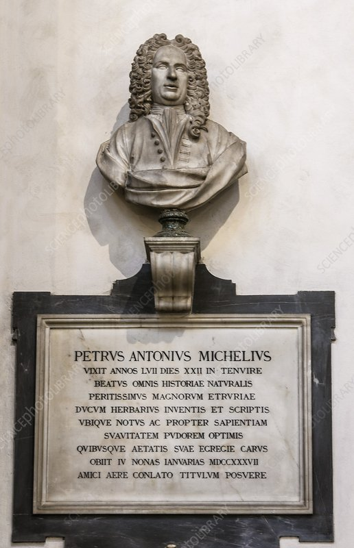 Memorial to Petrus Antonius Michelius
