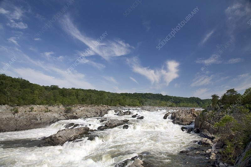 Whitewater on the Potomac River, USA